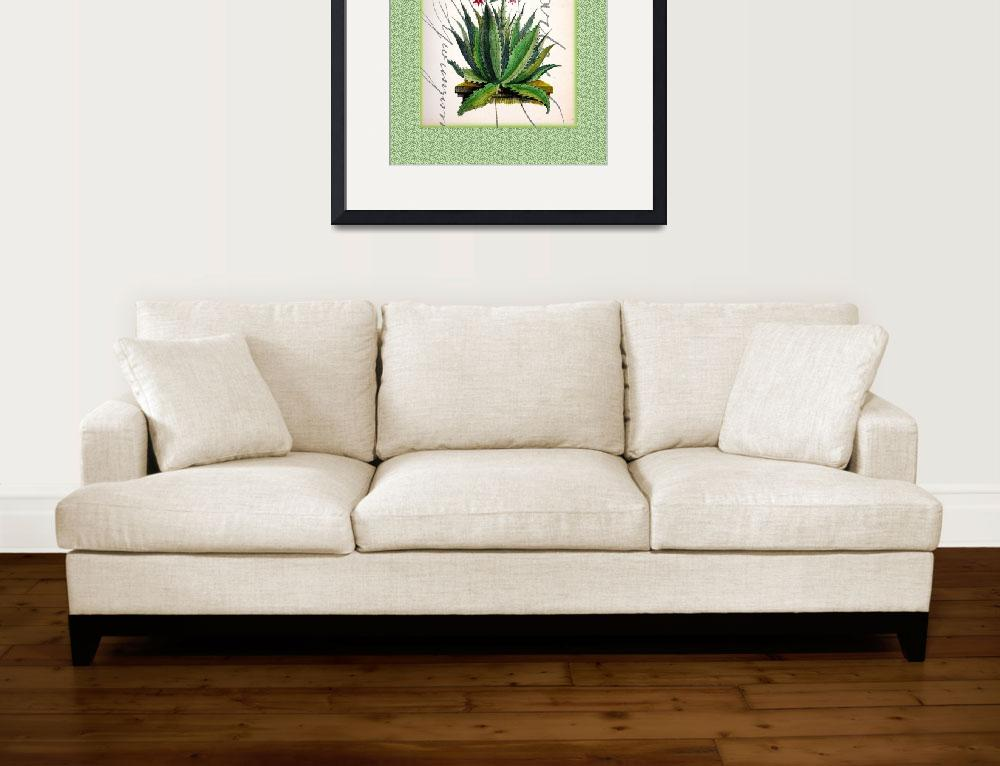 """Cactus Art Print""  by rickimountain"