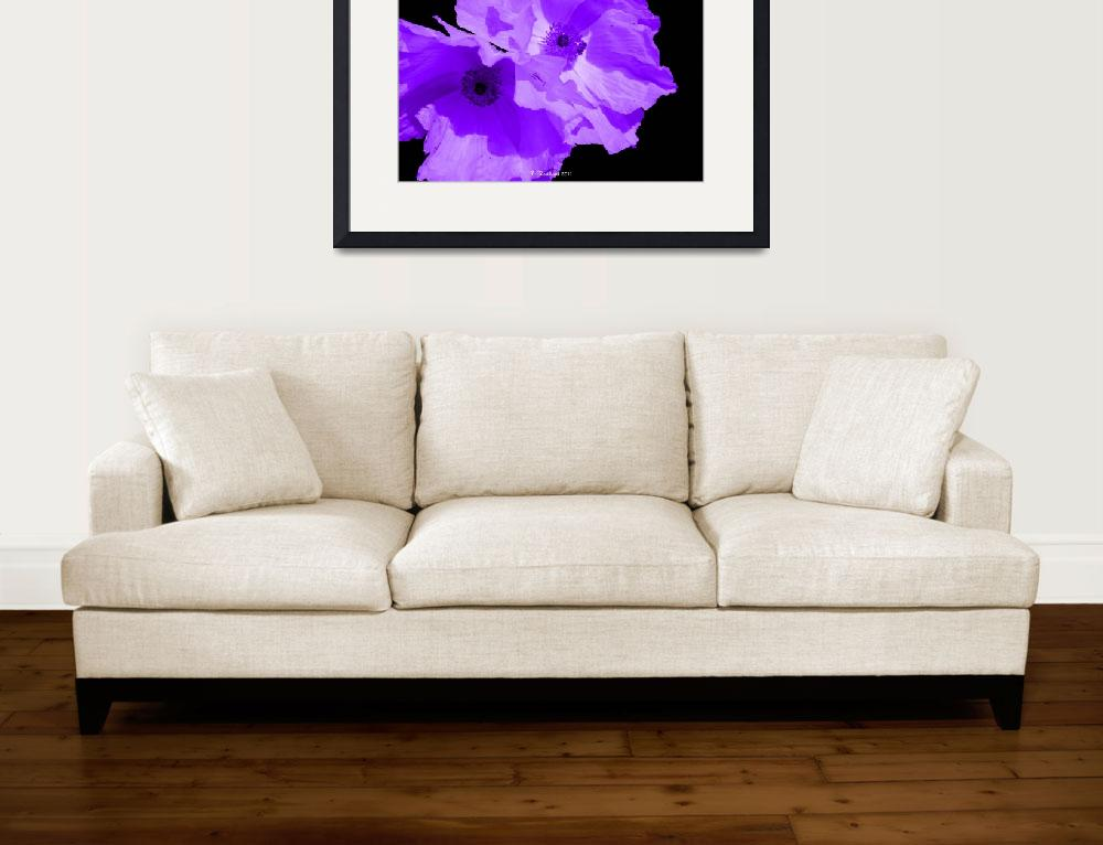 """""""Purple Poppies&quot  (2011) by bettynorthcutt"""