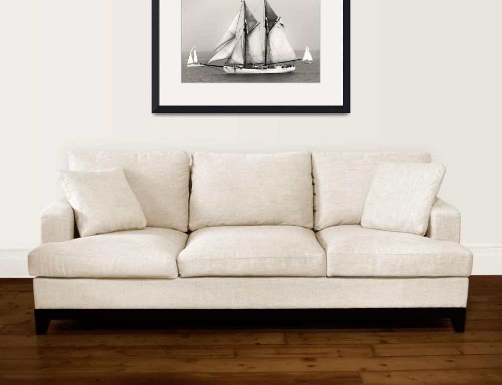 """""""Tall Ships Sailing&quot  (2009) by Black_White_Photos"""