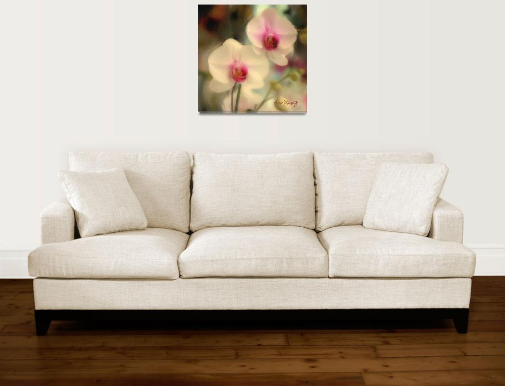 """""""WHITE ORCHIDS 2""""  (2013) by shaynaphotography"""