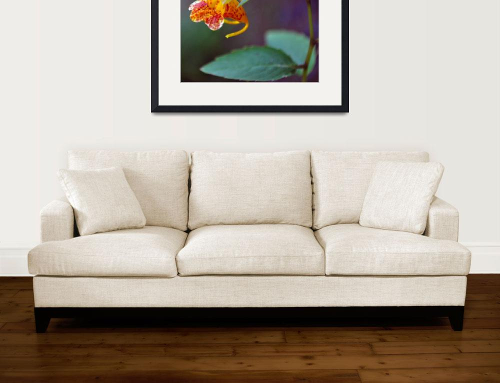 """""""Jewelweed""""  (2011) by LJdesigns"""