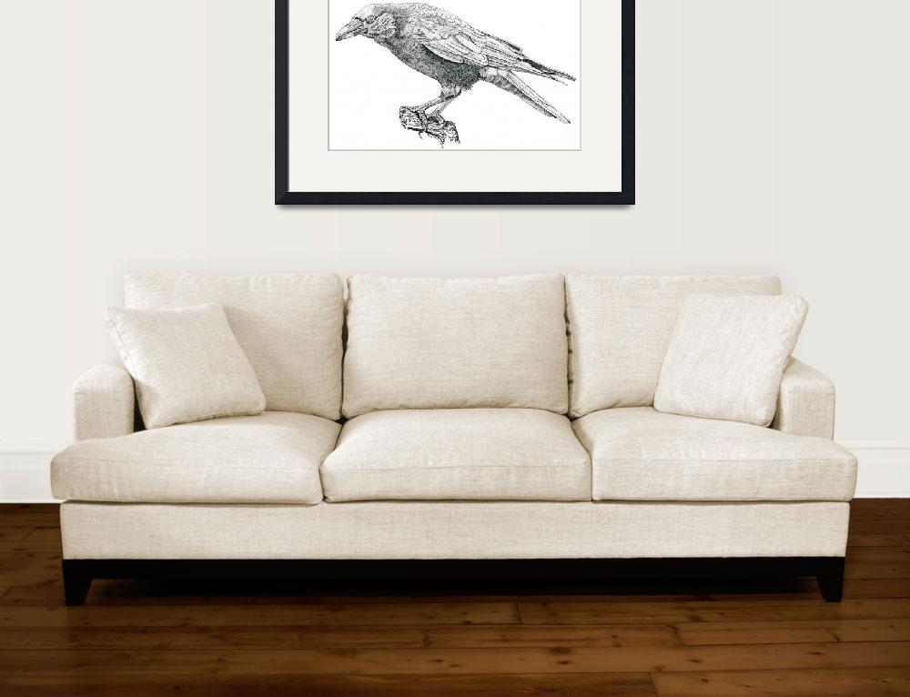 """""""Stipple Pen and Ink Crow&quot  (2007) by DulceDiane"""