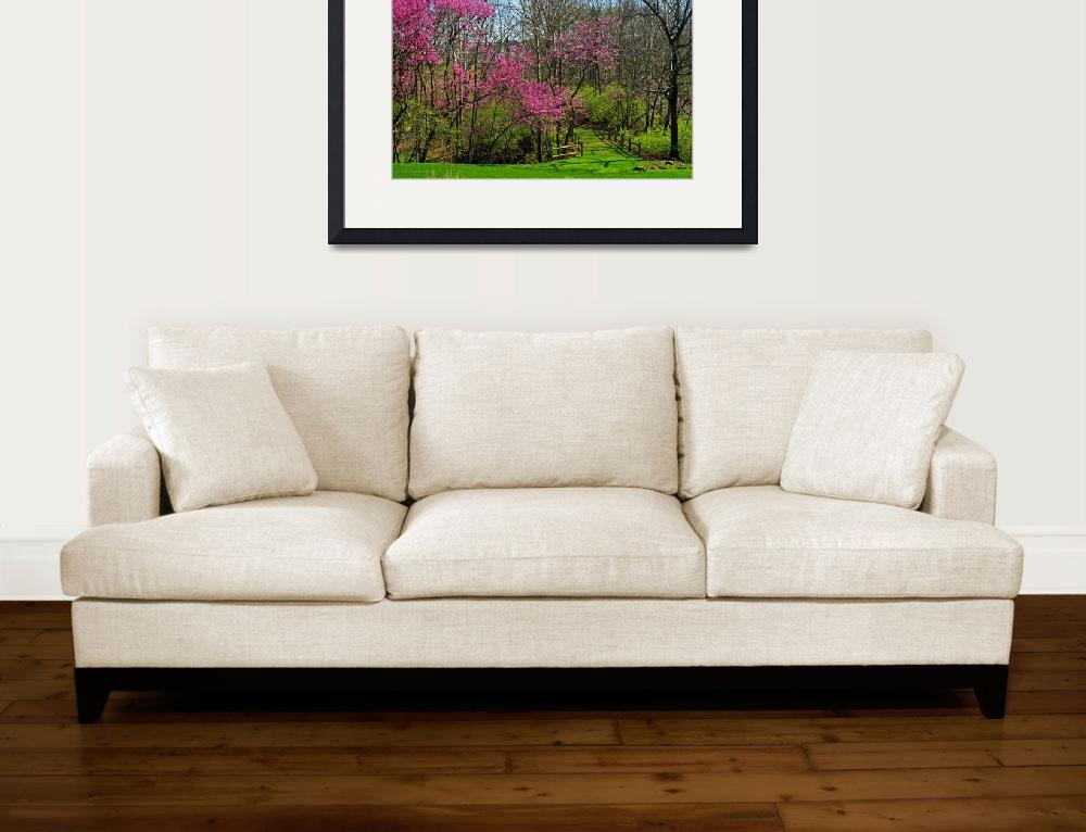 """Redbud Trees Blooming&quot  (2012) by KsWorldArt"