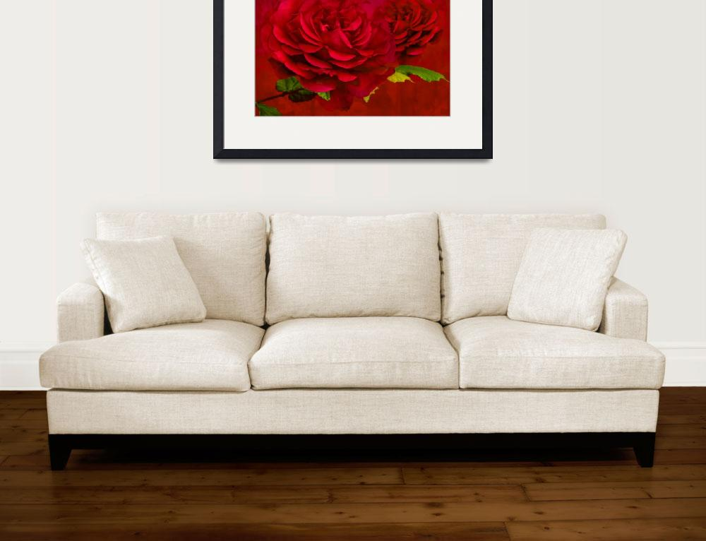 """Rose Textured&quot  by StevePurnell"