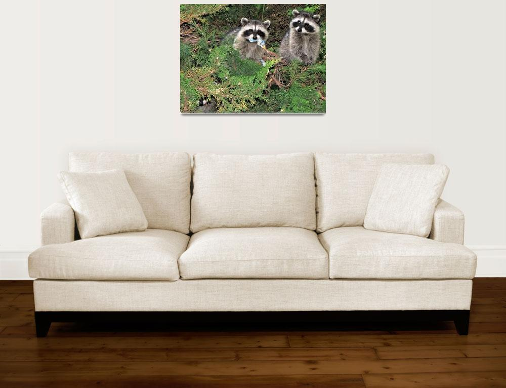 """""""Three Raccoons&quot  (2011) by makepeace"""
