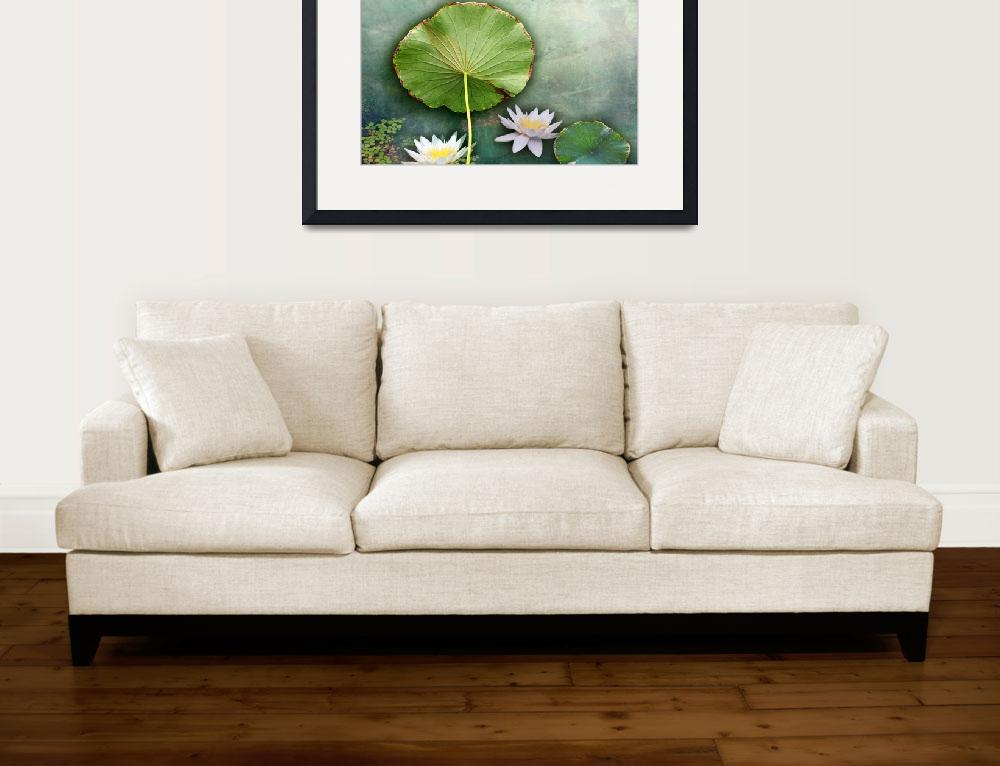 """""""Lily Pond&quot  (2019) by GiorgettaMcRee"""