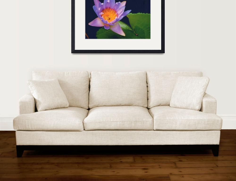 """""""Watter Lily&quot  by carlosartworks"""
