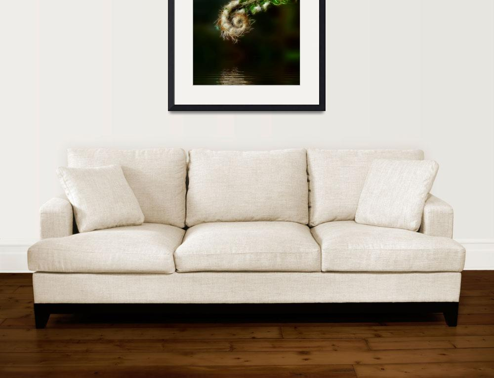 """Fiddlehead Fern&quot  (2009) by AngelsCreativeWorks"