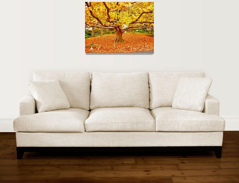 """Golden Tree of Autumn""  (2007) by New-Yorkled"