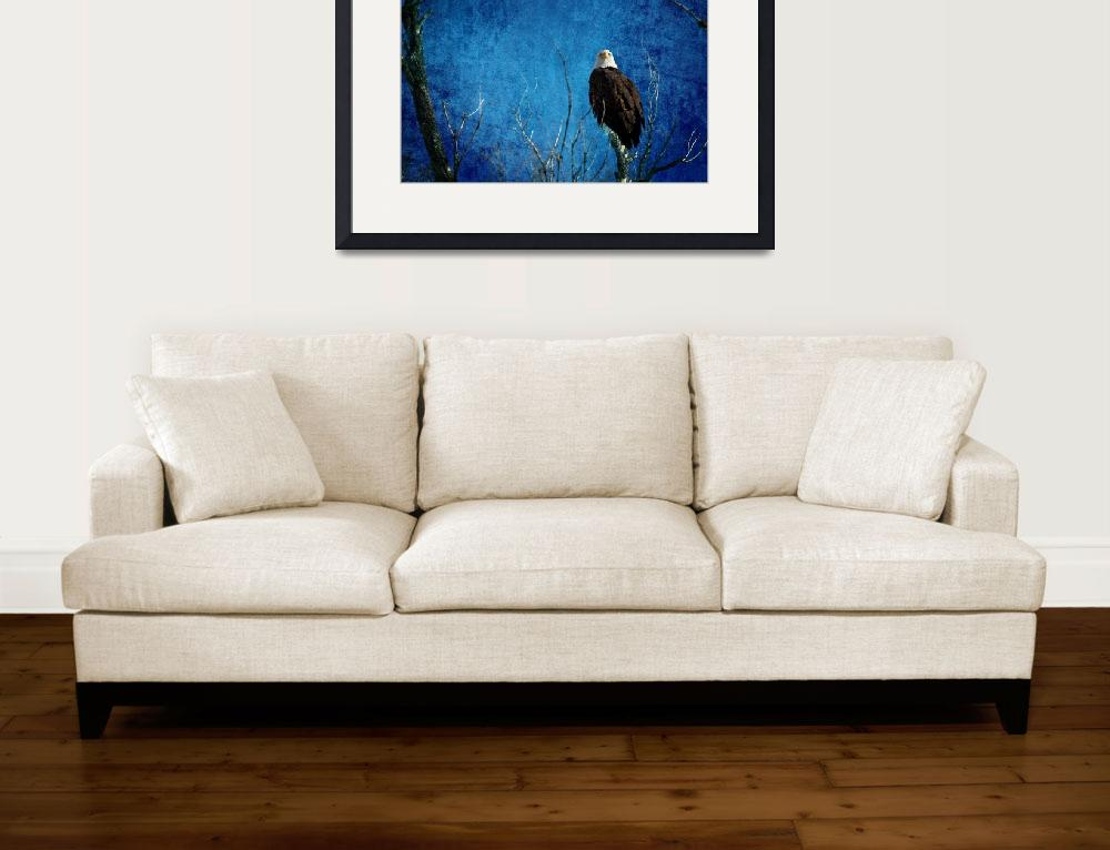 """""""Bald Eagle Blues Into The Night&quot  (2014) by lightningman"""