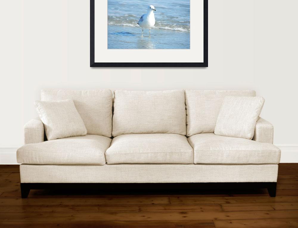 """""""Seagull""""  (2011) by Chadly"""