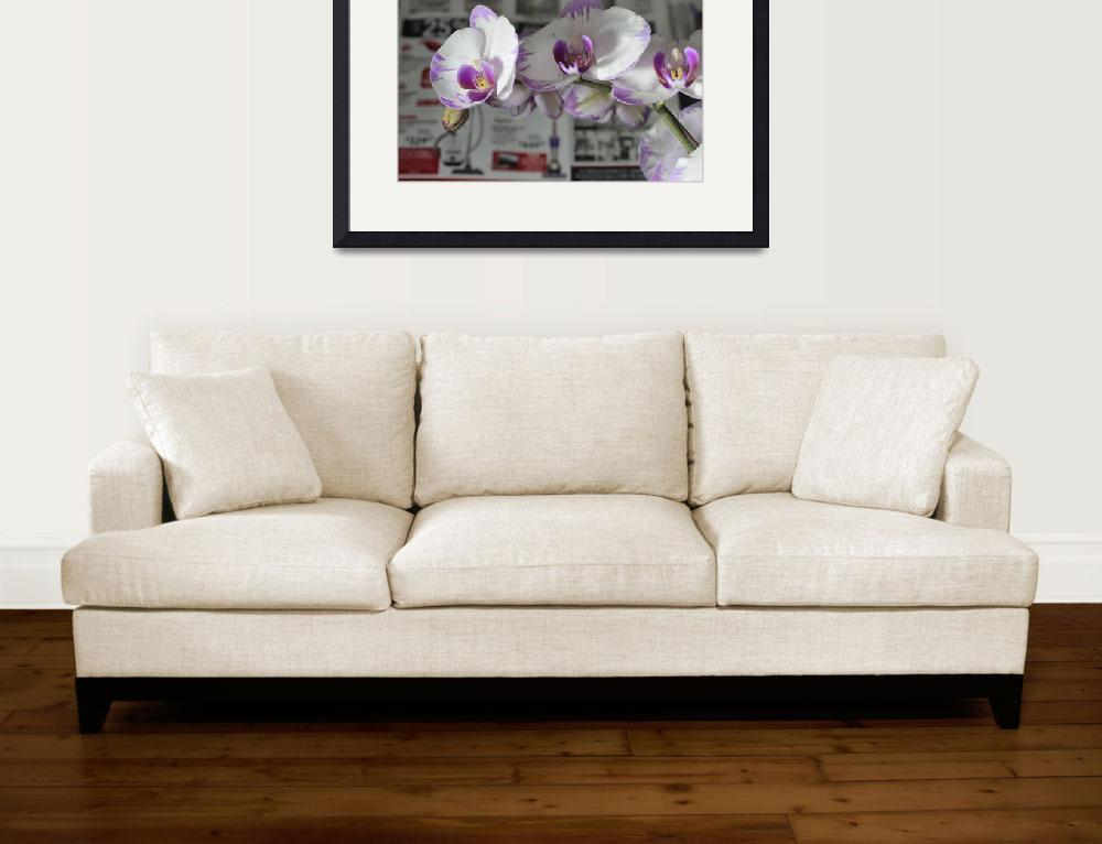 """""""Orchids with Vacuum Cleaners&quot  (2014) by newimage"""