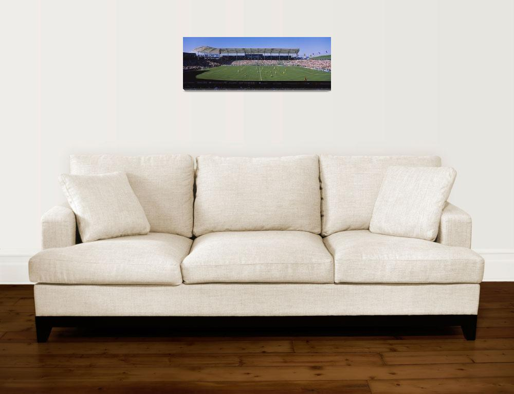 """""""Spectators watching a soccer match""""  by Panoramic_Images"""