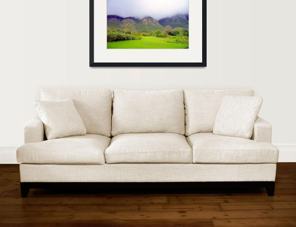 """""""Capetown Gardens, South Africa&quot  (2011) by biriart"""