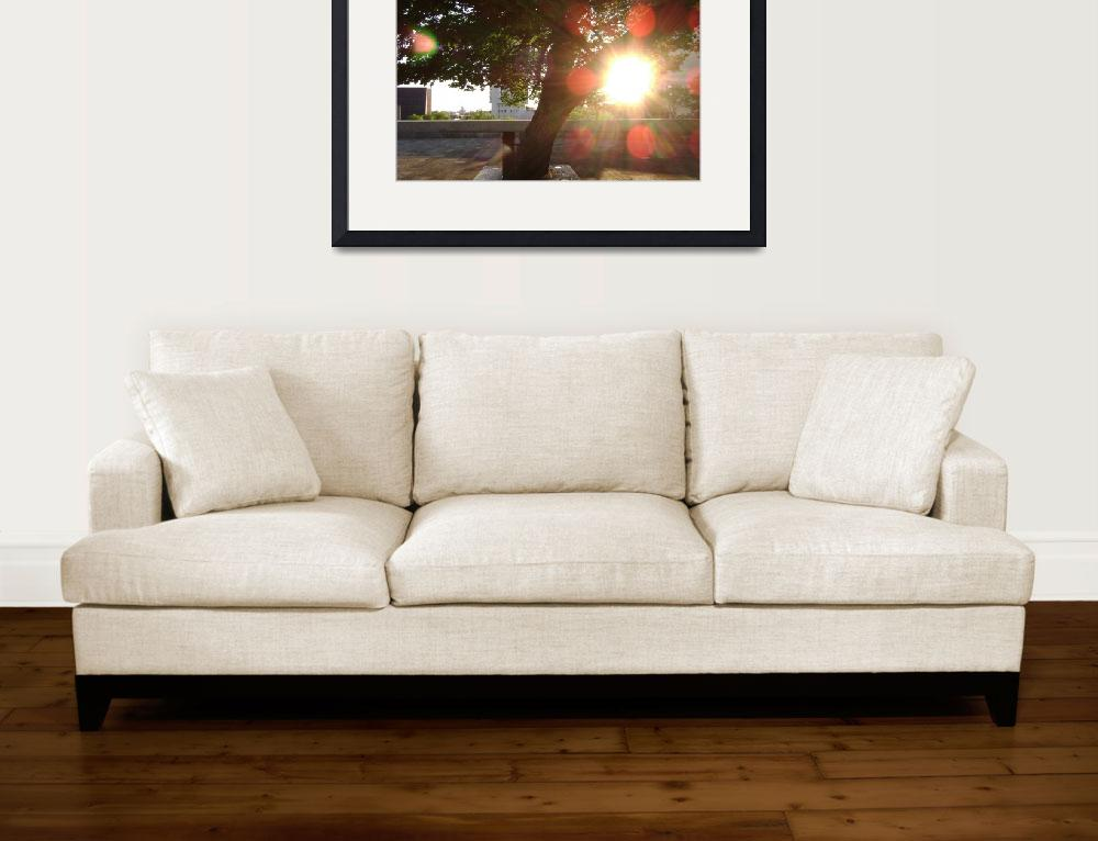 """""""Awesome Lens Flare Action&quot  (2009) by heltonart"""