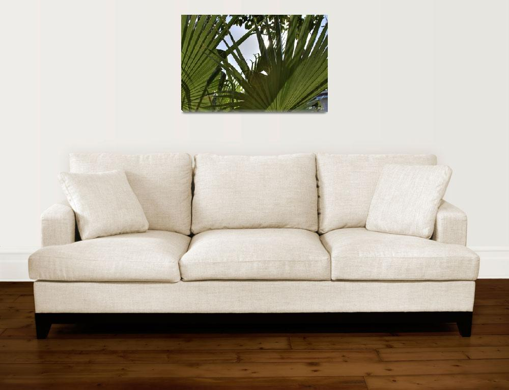 """""""Palms&quot  (2011) by mick411"""