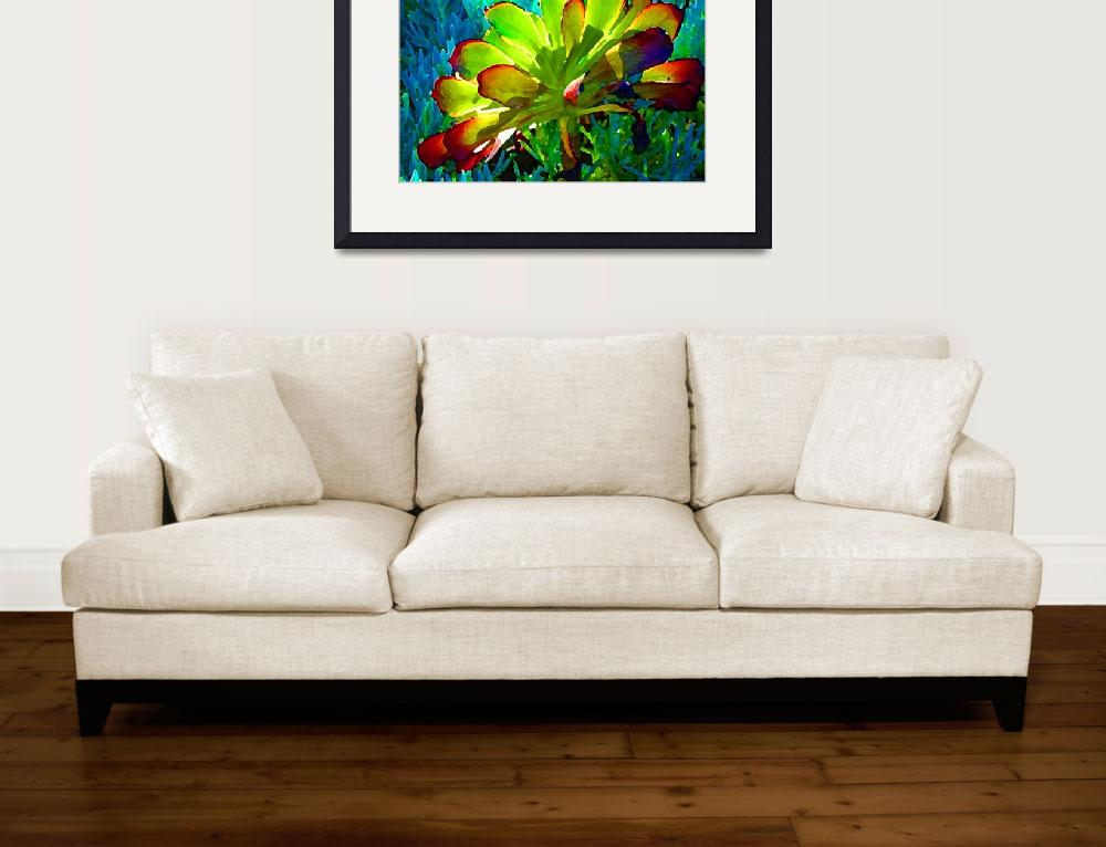 """""""Succulent Backlit on Blue 1""""  (2009) by AmyVangsgard"""
