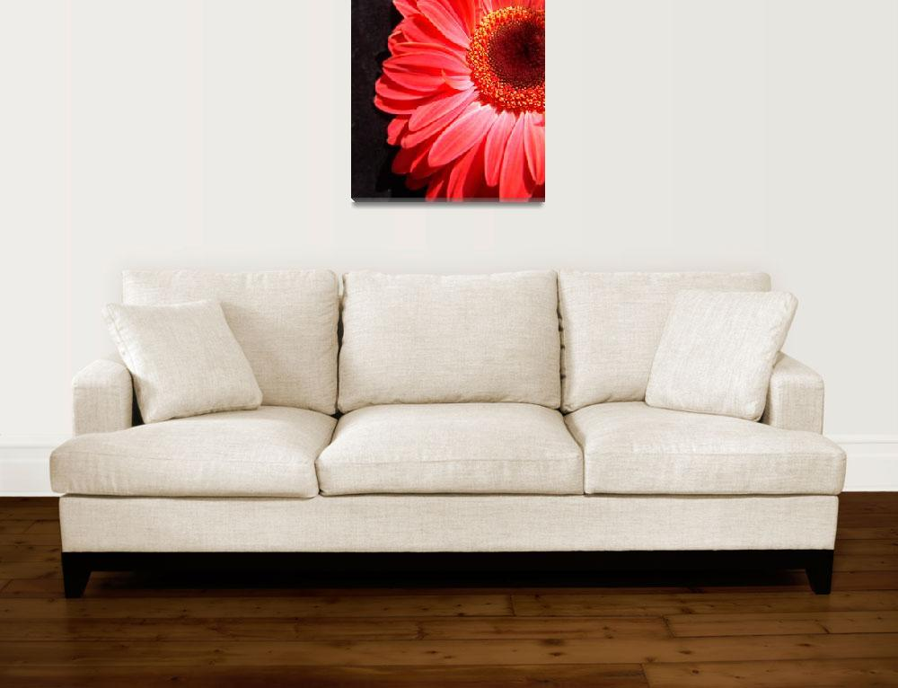 """Red Gerbera Daisy Luxurious&quot  (2006) by Infomages"