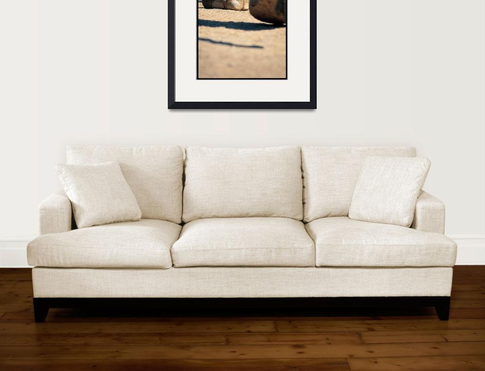 """""""African Elephant Feet CP001521&quot  by PaulSelvaggio"""