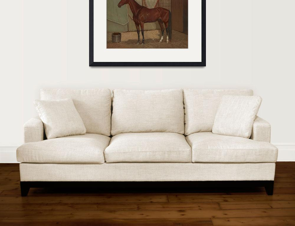 """Vintage Race Horse Illustration (1882)&quot  by Alleycatshirts"