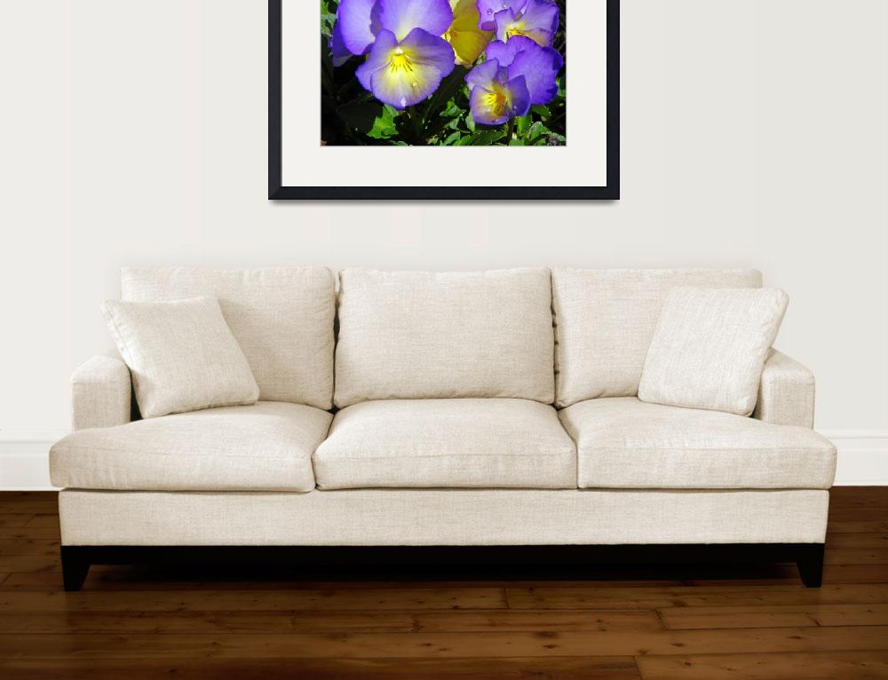 """""""Photography Art Flowers Of The Garden Of Nature&quot  by artsandi"""