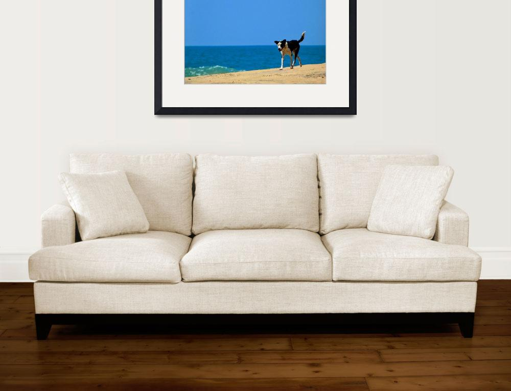 """""""Dog at Whiskey Point&quot  (2012) by CamillaKidd"""