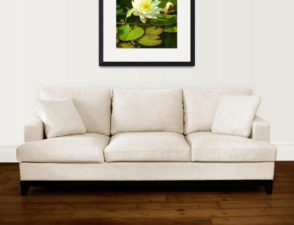 """""""Yellow waterlilly&quot  (2010) by gritchhart"""