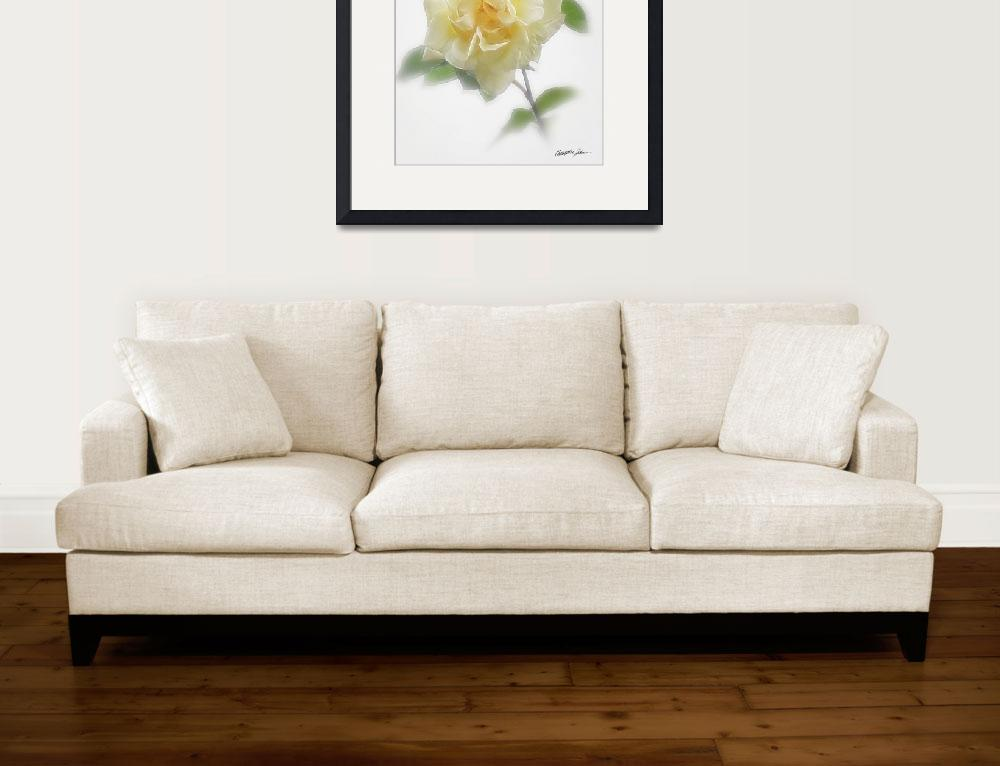 """""""Creamy Yellow Rose&quot  (2009) by ChristopherInMexico"""