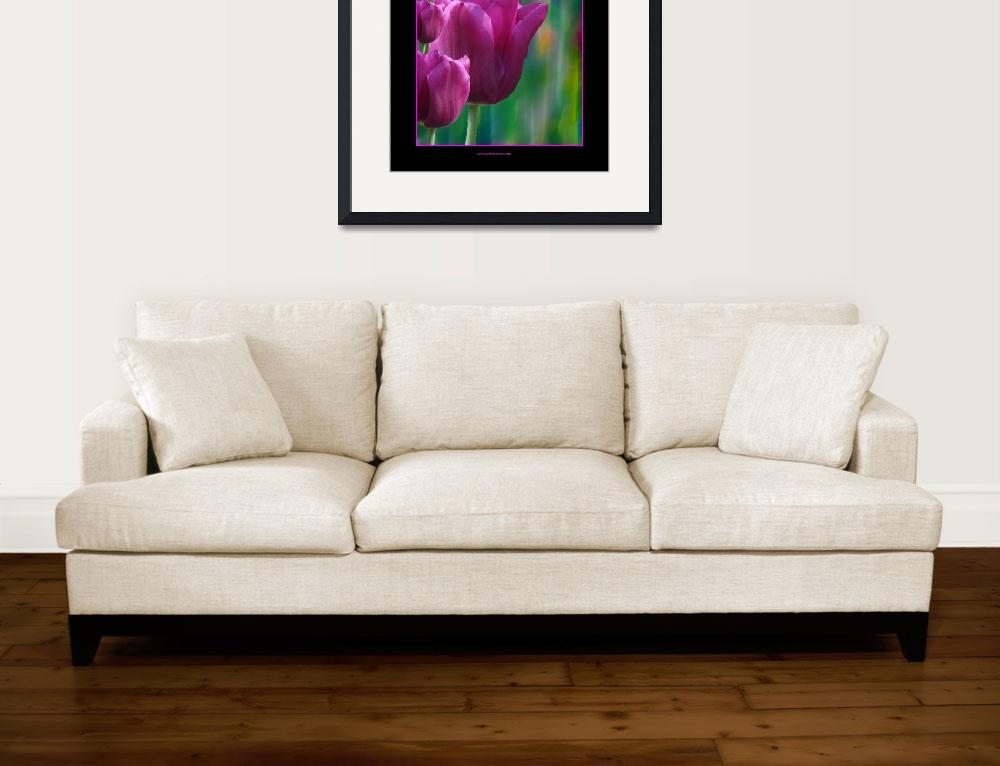 """""""Pink Tulips&quot  (2009) by artforcancer"""