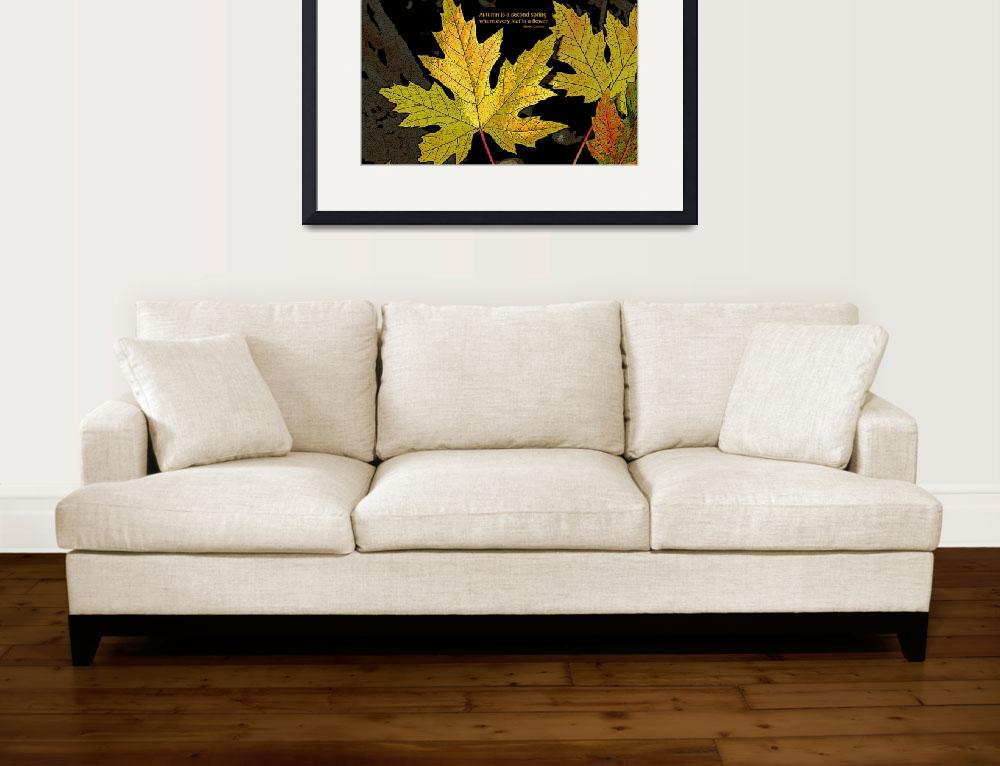 """Second spring maple leaves&quot  (2007) by eye4nature"