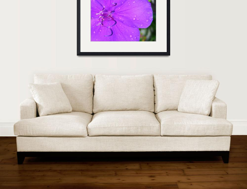 """""""The Color Purple&quot  by ishotya"""
