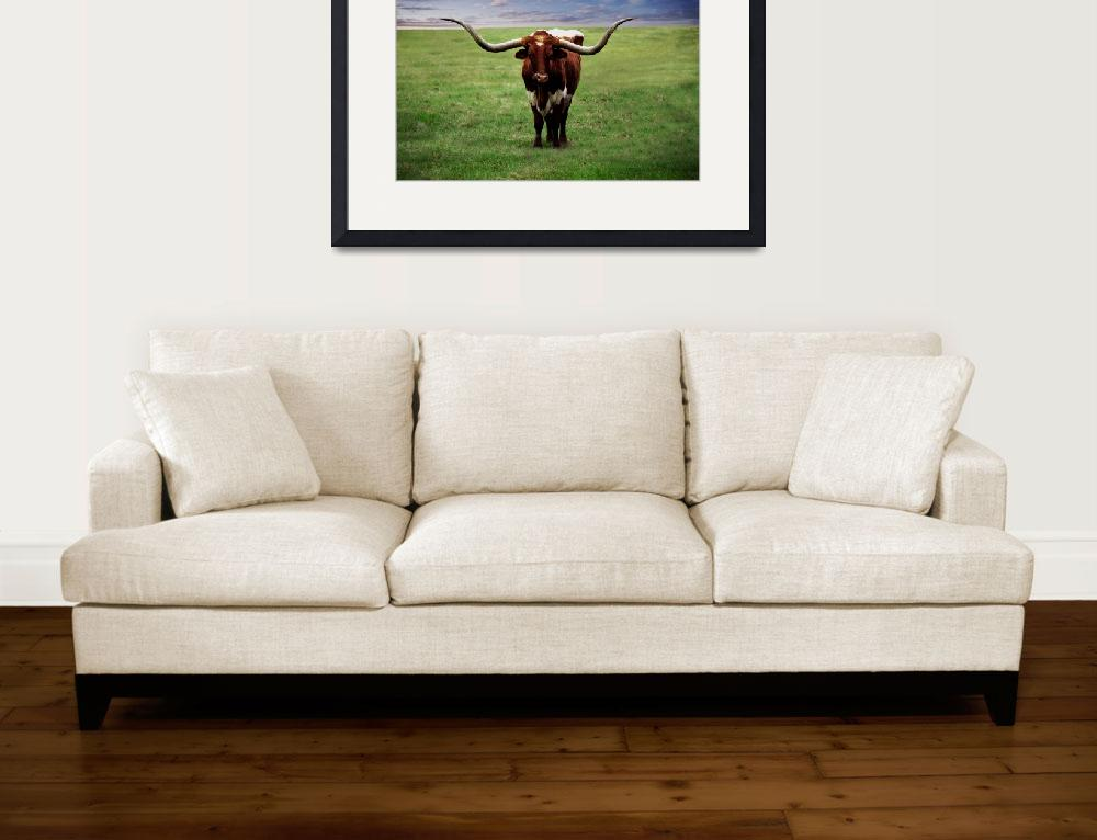 """""""Photo Texas Longhorn A010816&quot  (2016) by MasArtStudio"""
