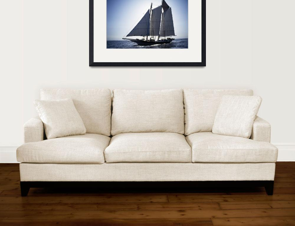 """""""Back Lit Pungy Schooner Lady Maryland&quot  by McallenPhotography"""