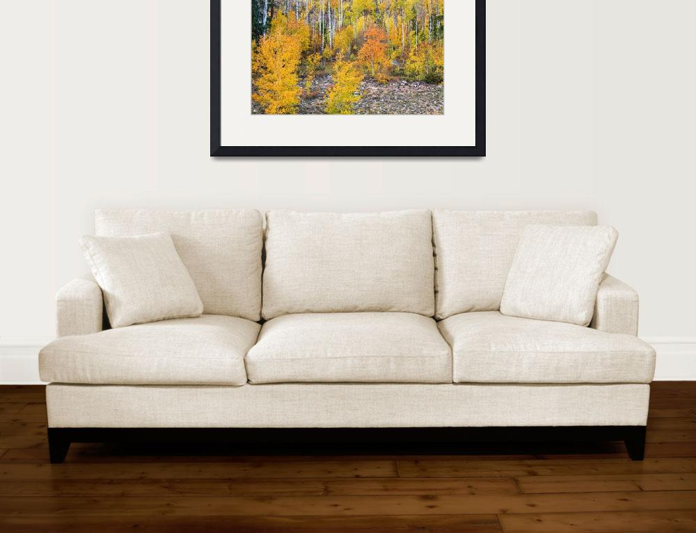 """""""Colorful Autumn Forest In The Canyon of Cottonwood&quot  (2013) by lightningman"""