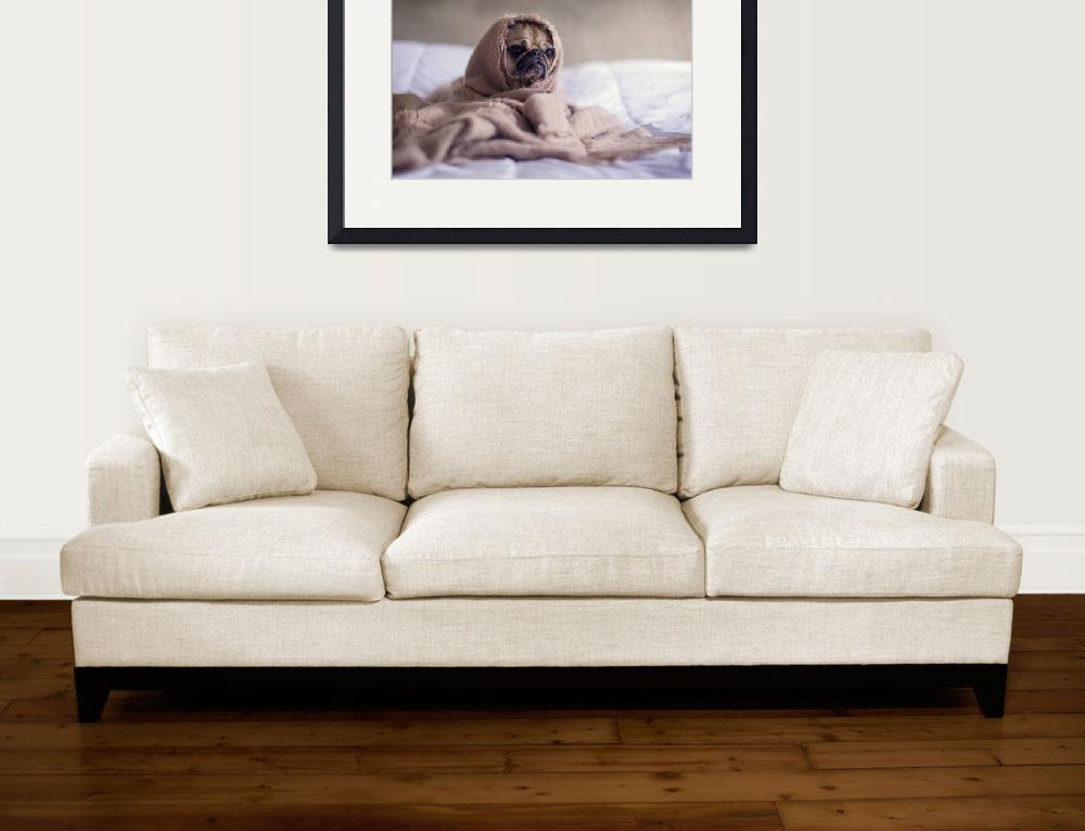 """631 Art Dog Framed Photo&quot  by eddiealfaro"