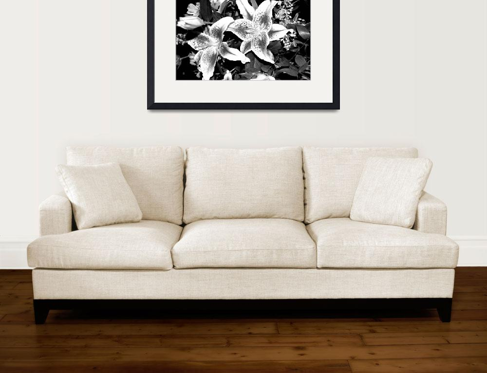 """""""Wild Orchids Black and White&quot  (2008) by RominasArt"""