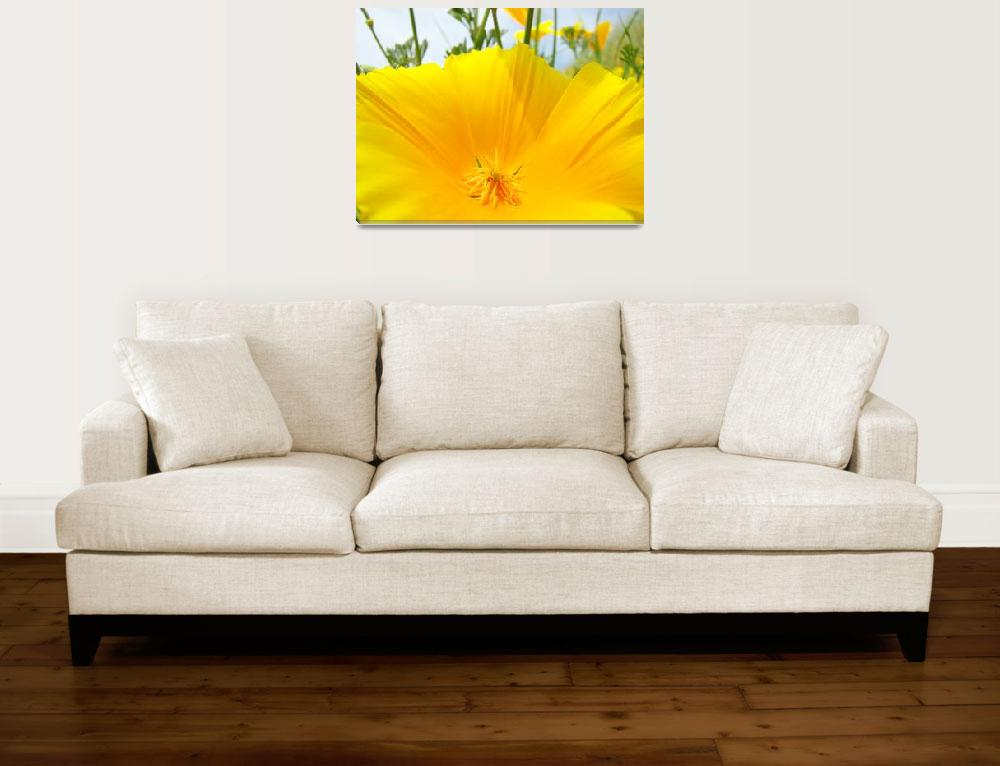 """""""Big Poppy Flower art prints Poppies Macro Floral&quot  (2014) by BasleeTroutman"""