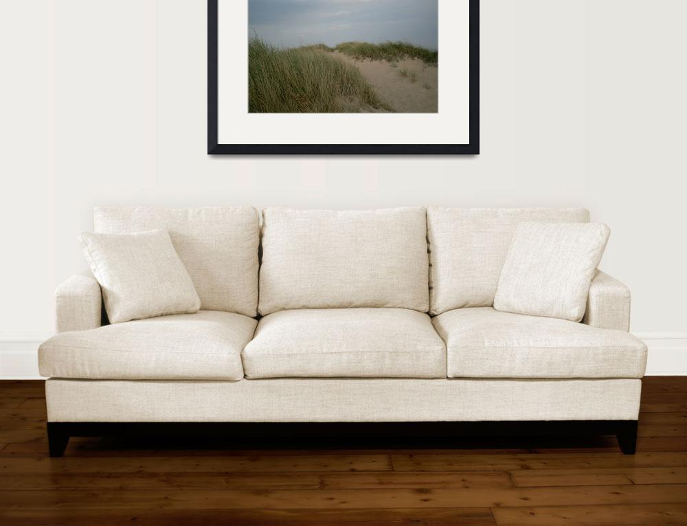 """Bay Side Dune Eastham.01&quot  (2011) by JBTurek"