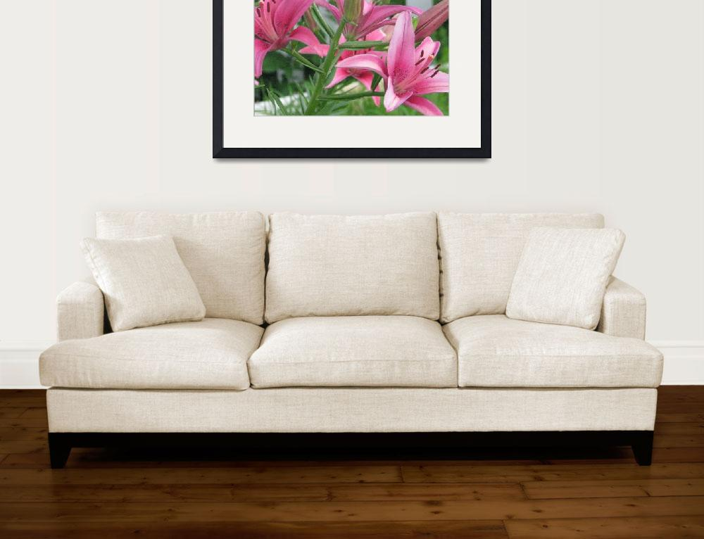 """""""Pink Lilies&quot  (2008) by willis-prints"""