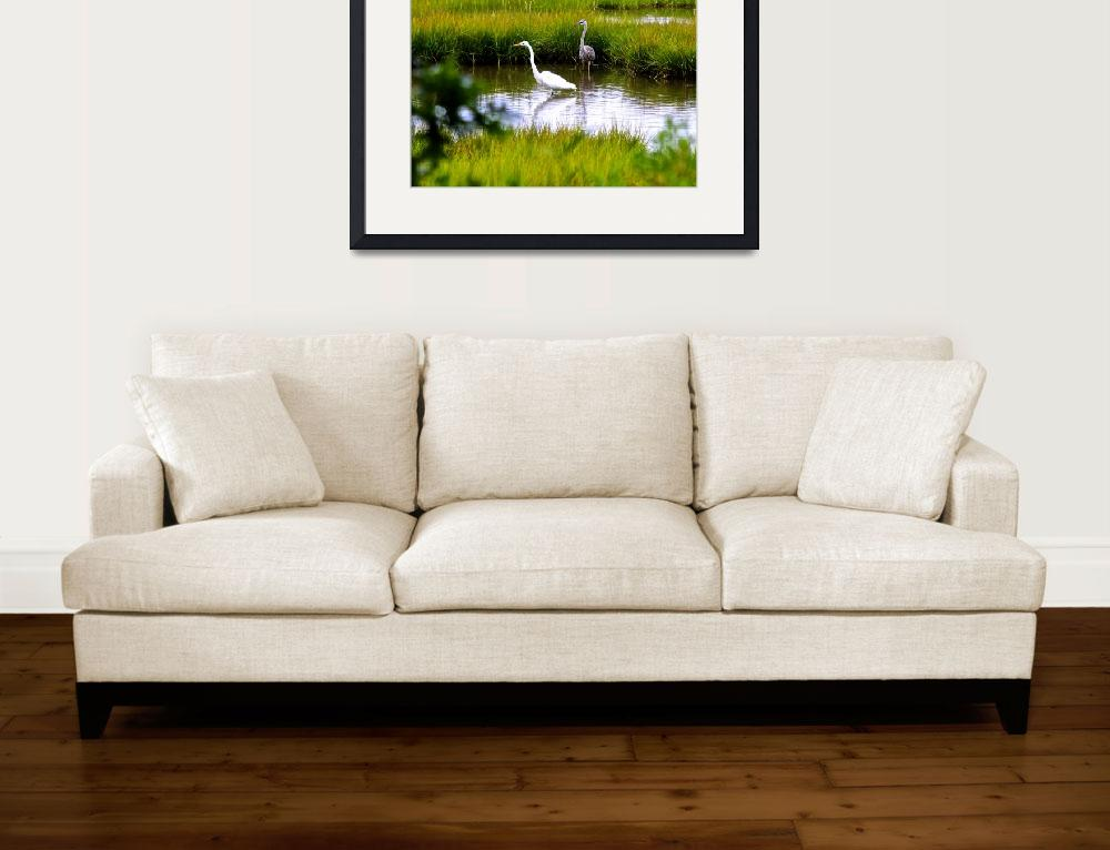 """""""A Gathering of Shorebirds&quot  (2017) by danewald"""