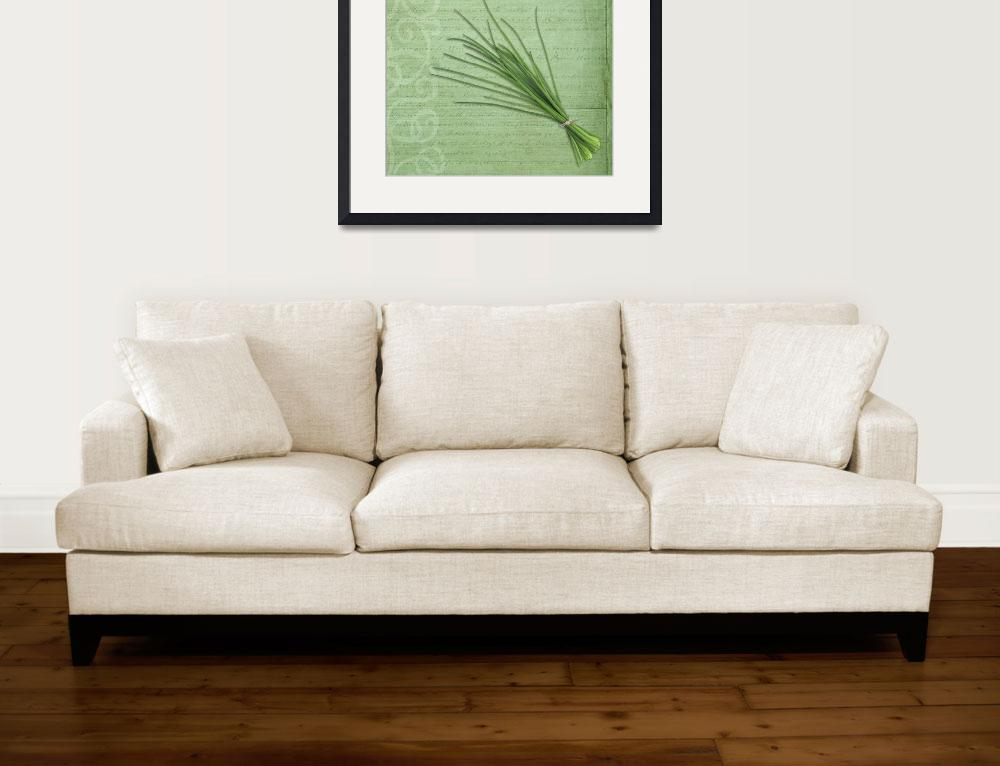 """""""Classic herbs series: Chives&quot  (2012) by CoraNiele"""