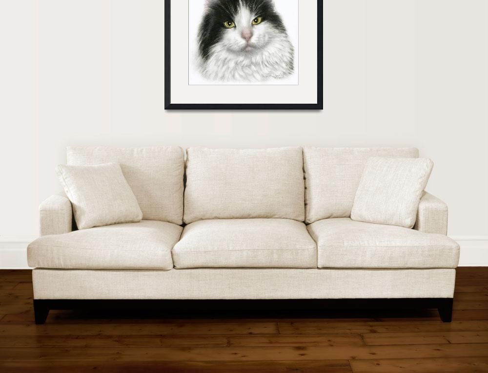 """""""Marie, Black & White Long-Haired Cat""""  (2006) by sdonley"""