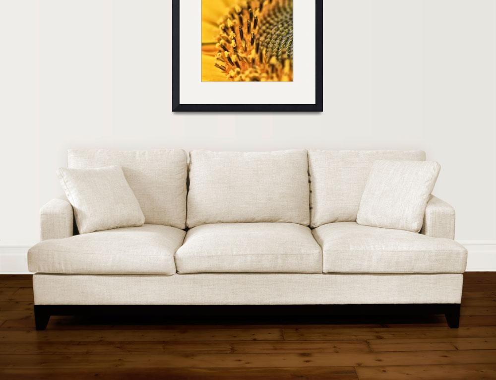 """""""Sunflower&quot  (2011) by DNA-ARTS"""