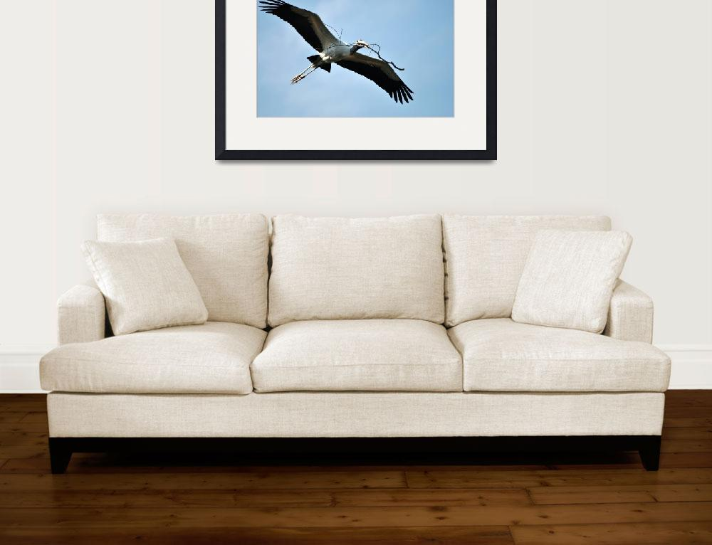 """""""Wood Stork&quot  (2009) by karld001"""