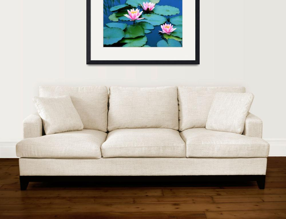 """""""Water Lilies&quot  (2017) by JessicaJenney"""