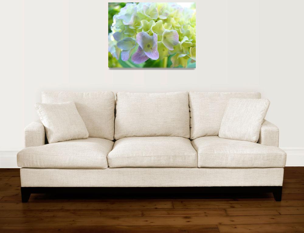 """Hydrangea FLOWERS ART Floral Botanical Baslee&quot  (2009) by BasleeTroutman"