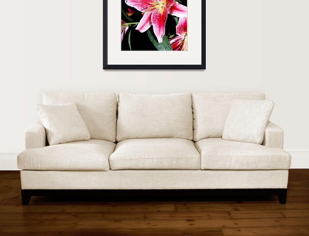 """Single Orchid&quot  (2008) by RominasArt"