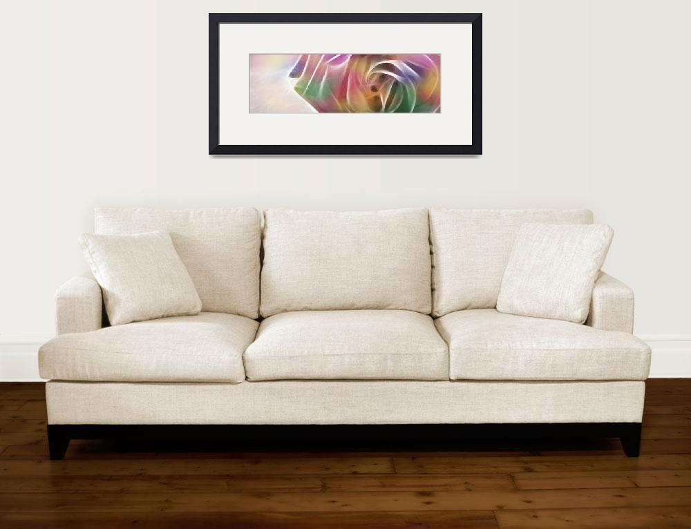 """""""Rose Explosion 1 Colors&quot  (2009) by ChristopherInMexico"""