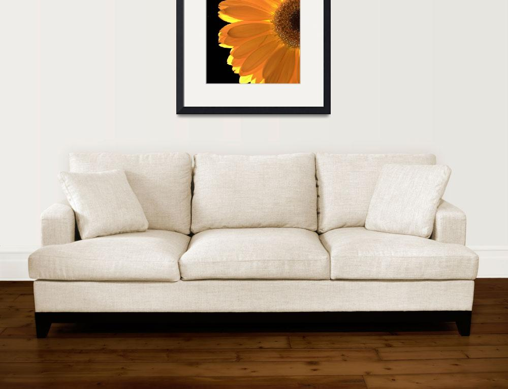 """""""SunShine&quot  (2008) by Fenyn"""