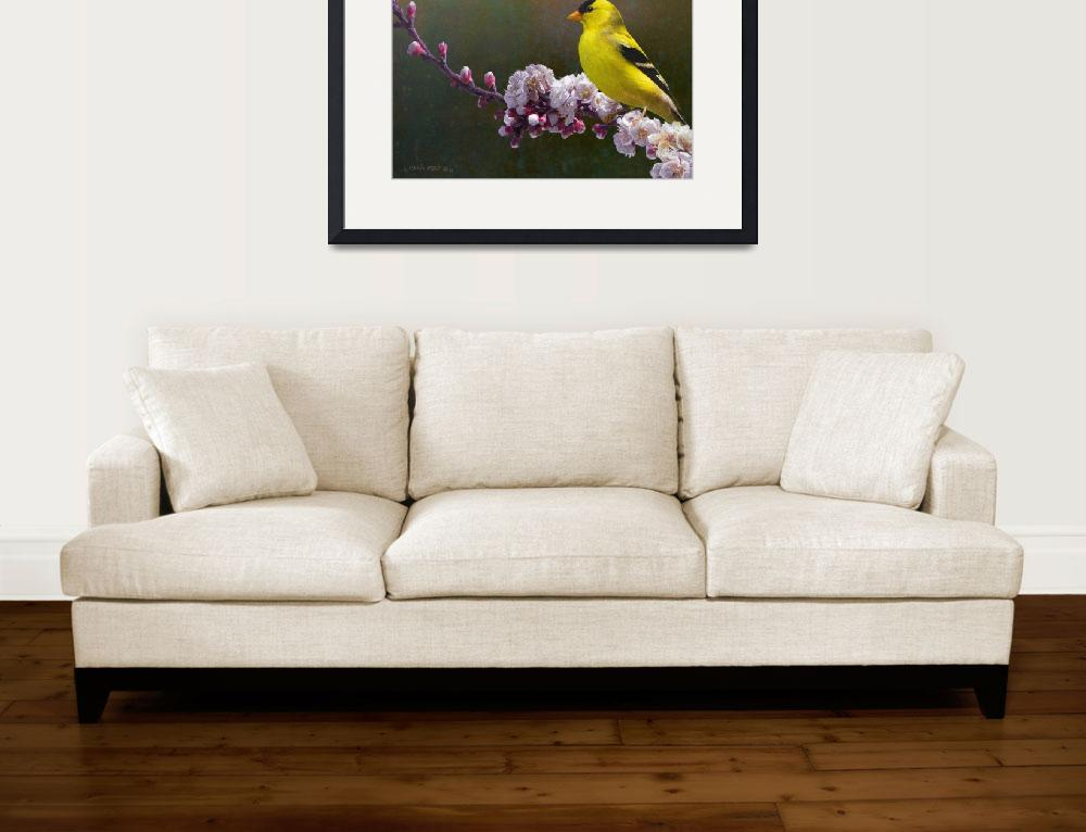 """rivals in color / goldfinch and blossoms&quot  (2011) by rchristophervest"